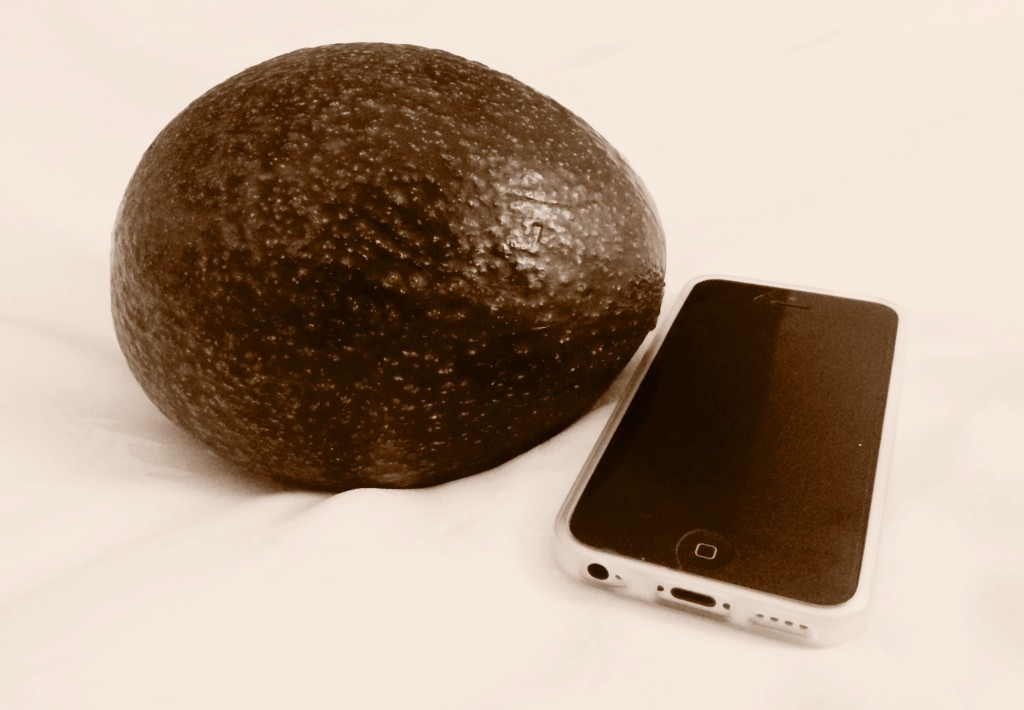 huge avocado