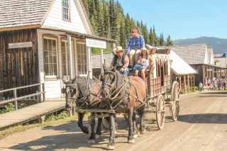 horse and coach, Barkerville, BC