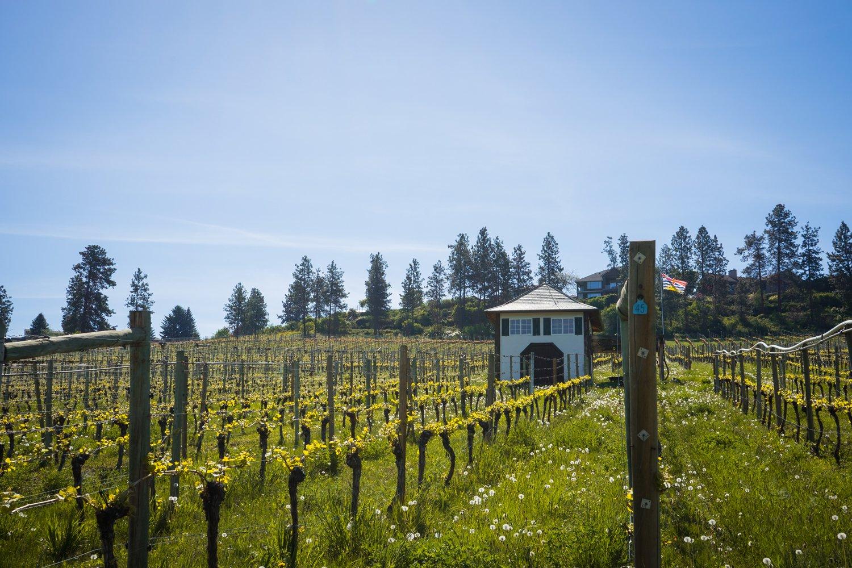St Hubertus Winery, Kelowna, BC