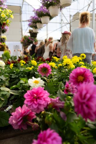 Floral Garden Party, Okanagan Wine Festival, Kelowna, BC