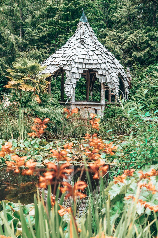 Botanical Gardens, Tofino, BC Vancouver Island
