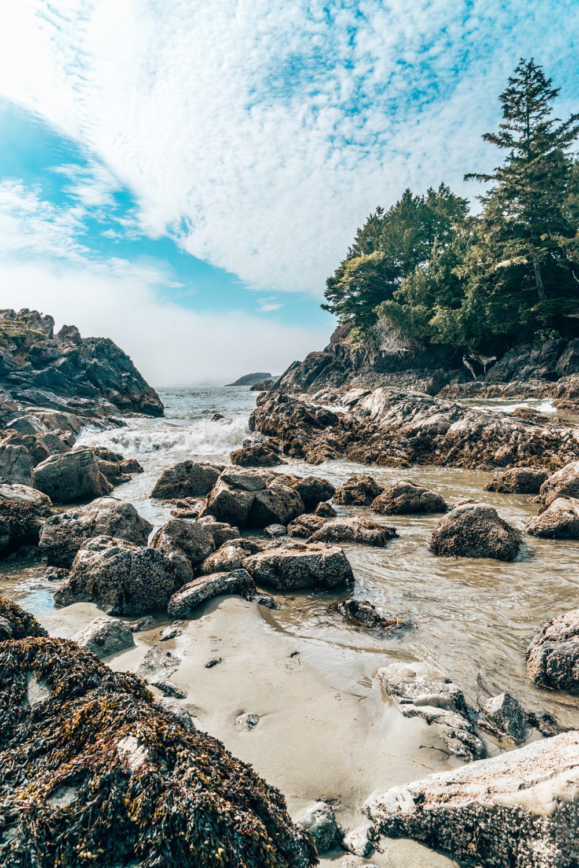 Beaches, Tofino, BC Vancouver Island