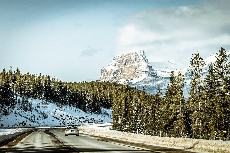 Jasper in the winter