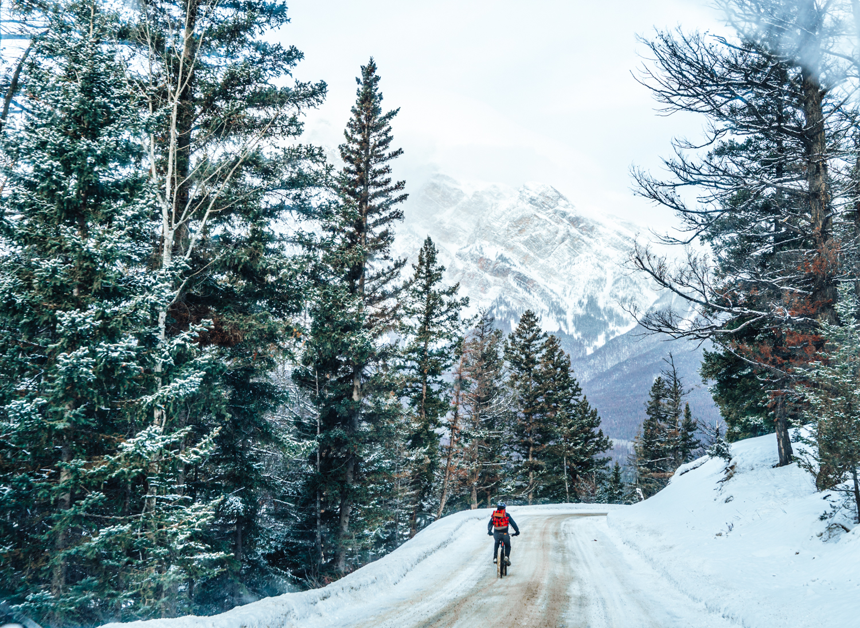 Fat biking in Jasper National Park