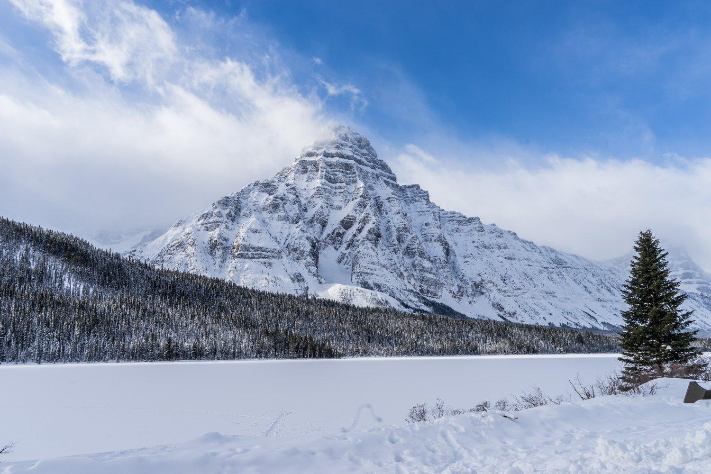 Between Banff and Jasper