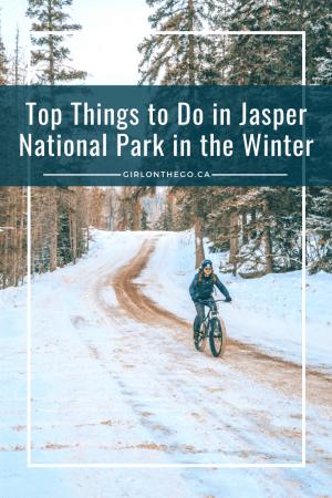 Jasper National Park Fat Biking